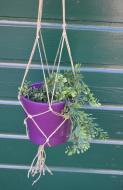 plantenhanger9