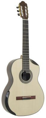 2005 Ergonomic Guitar