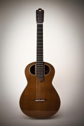 Experimental Classical Guitar, Front View