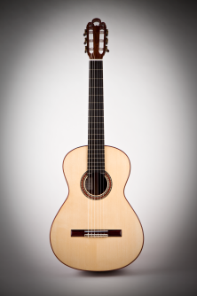 Classical Traditional Guitar 2009