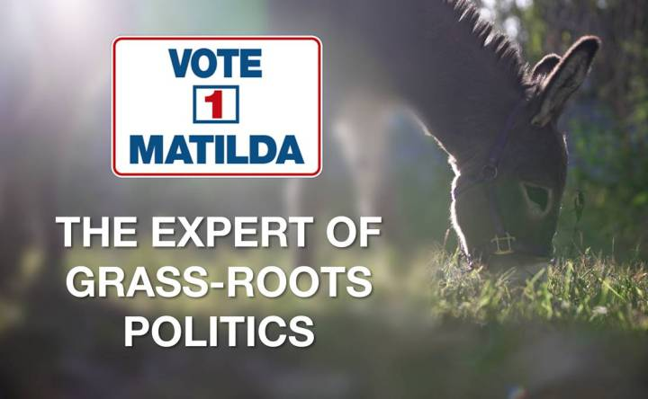 Expert of grass-roots politics