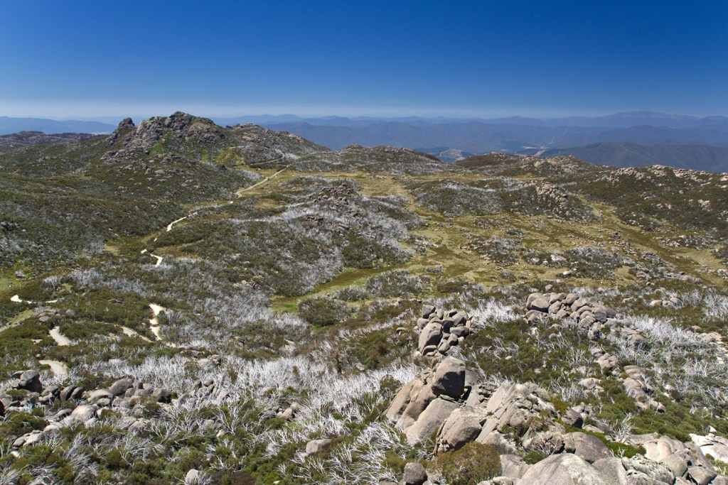 Great Alpine Road - Mt Buffalo - Horn - 2
