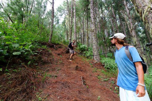 low_climb to Mt Duff