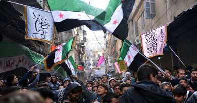 Secular demonstrators, shown at a protest march this month in Aleppo, wave the old Syrian flag (green, white, black and red) that has become the symbol of their opposition movement.