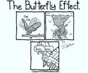 Todos sabemos que ese era el plan de la mariposa desde el comienzo.