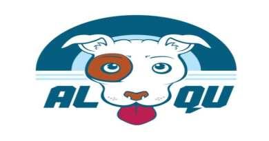 Entrevista: ALQU