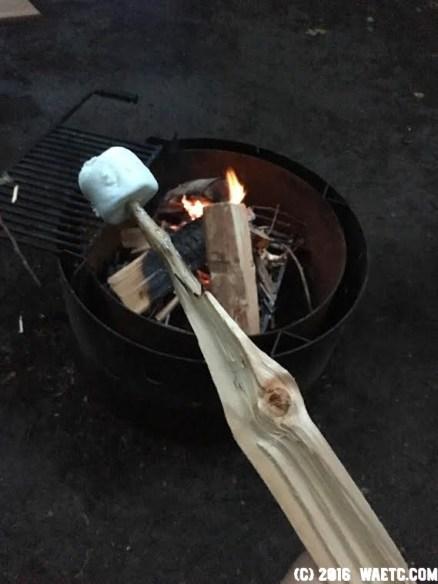 themarshmallowstick