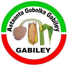 gabiley picture