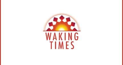 Fake TV Illusion