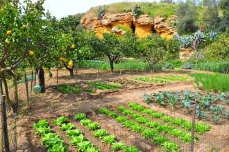 Some of the most beautiful, and fascinating, gardens in Sicily