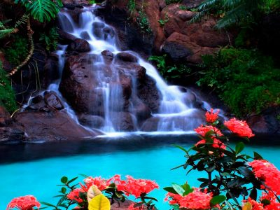 Tropical Waterfall Wallpaper : Wallpapers13.com