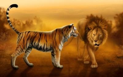 Wallpapers Hd Lion - impremedia.net