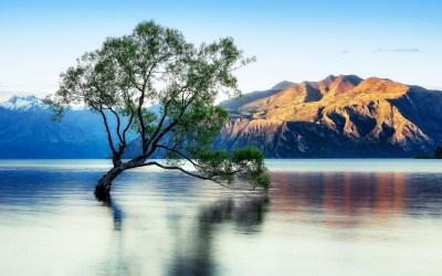 Lake Wanaka Beautiful Reflection New Zealand Wallpaper For Desktop : Wallpapers13.com