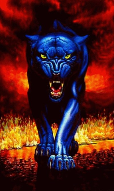 Download Black Panther Live Wallpaper Gallery