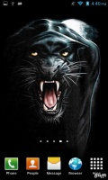 Download Black Panther Live Wallpaper Gallery