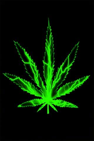 Download Live Weed Wallpaper Gallery