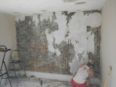 Download Painting Plaster Walls After Removing Wallpaper Gallery