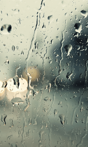 Download Rain Drops Live Wallpapers Gallery