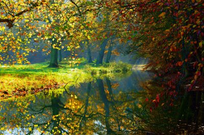 Landscape nature autumn forest trees river reflection wallpaper | 6000x4000 | 529612 | WallpaperUP