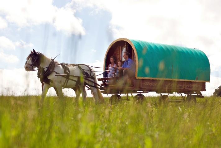 Creative Gypsy Caravan Horse Years Gypsy Men And Their