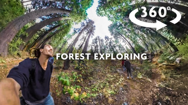 FOREST EXPLORING 360