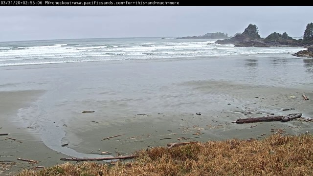 Pacific Sands Beachcam