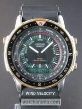 Citizen Wingman 1991