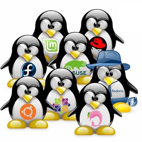 Welke linux distributie