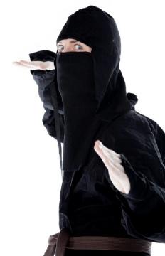 debunking ninja in the modern world
