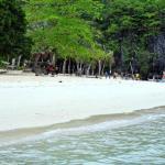 7 Commando Island