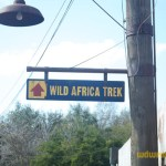 Wild-Africa-Trek-wdwradio-680