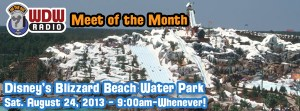 600-1-wdw-radio-disney-meet-of-the-month-disney-august-2013-disney-blizzard-beach-water-park