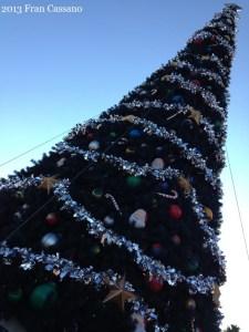 DHS Holiday Tree