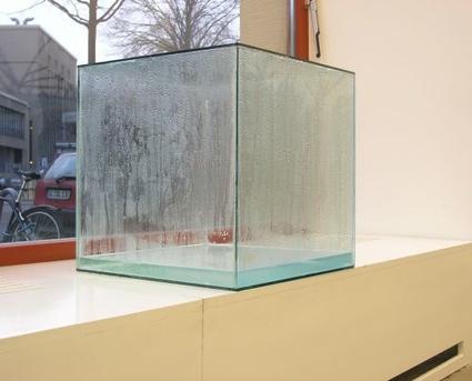 bonaqua_kondensationswuerfel_2005_glas_silikon_bonaqua-tafelwasser_45_x_45_x_45_cm.jpg