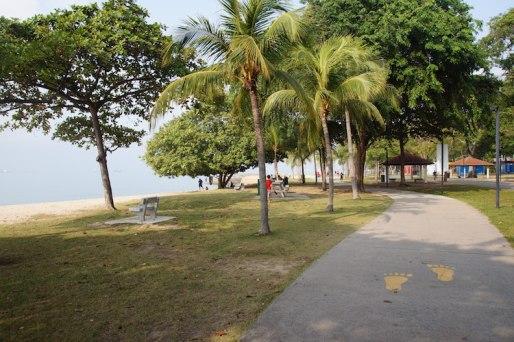 Singapore fietsen park withlocals