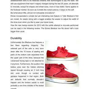 Etnies Bledsoe Low review
