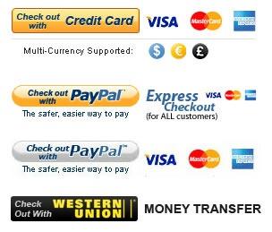 dealextreme-guia-paso-a-paso-comprar-gadgets-economico-internet-pagos-paypal-credit-card-money-transfer