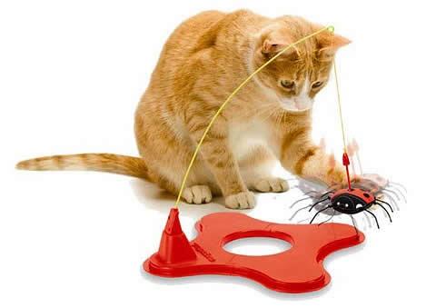 magneticat-juguete-gatos