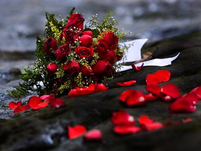Bouquet roses rouges Saint Valentin