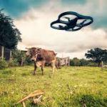 drone 34