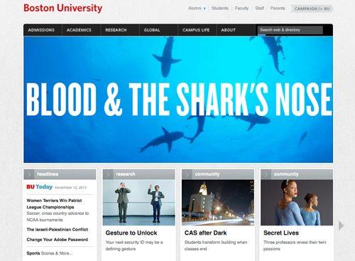 6. Boston University