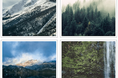 """What is an """"Image Gallery"""" in WordPress?"""
