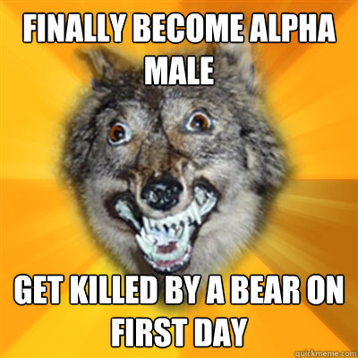 Yo, dudes: Alpha males are a myth, according to actual experts on wolves