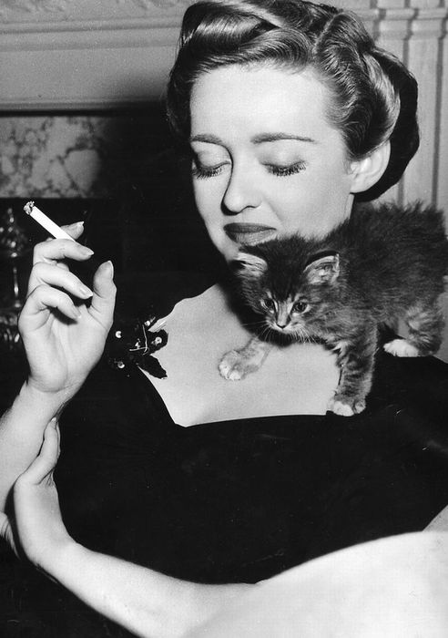 Hey! It's Bette Davis, with a kitten! (Plus bonus cats.)