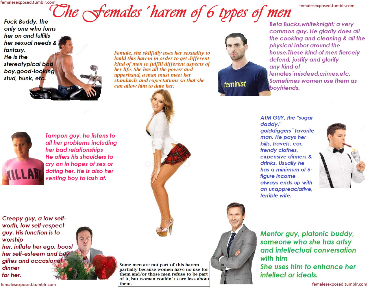 "Women love creepy stalkers, and other insights from ""The Females' Harem of 6 Types of Men"""