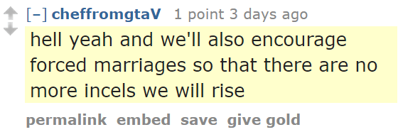 cheffromgtaV 1 point 3 days ago hell yeah and we'll also encourage forced marriages so that there are no more incels we will rise