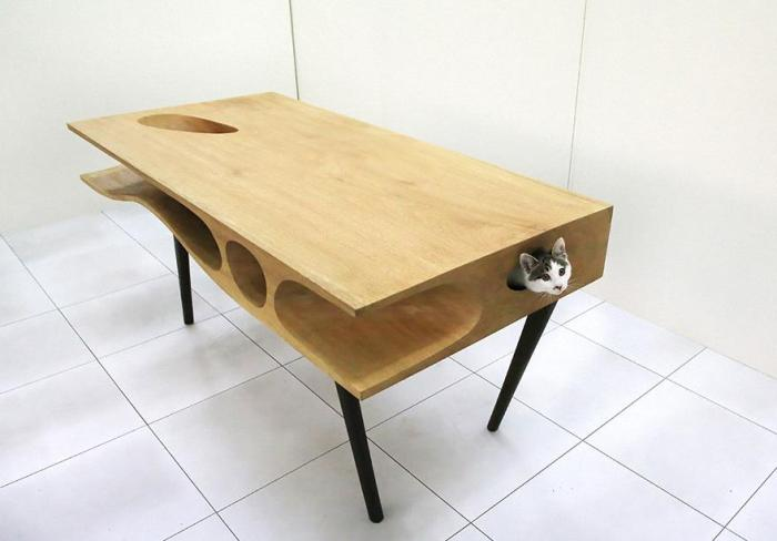 Cat head sticking out side of catable desk