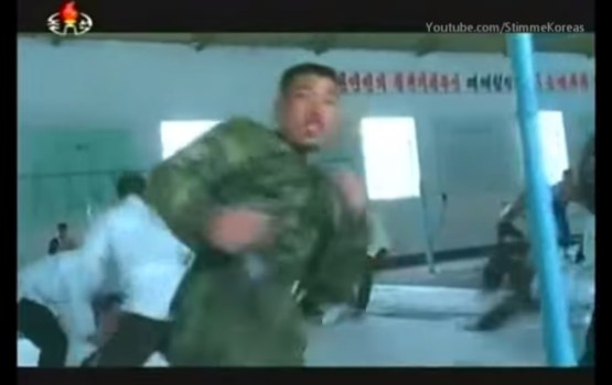 North Korean Soldiers Display Steely Prowess in Martial Arts Training