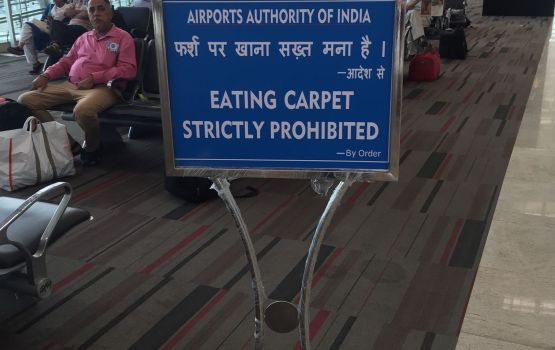 Can We Eat Carpet In Other Terminals At Least?