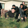 Kim Jung-un looking at a tree nursery